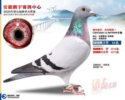 安徽�i宇�Q�68名