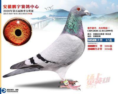 安徽�i宇�Q�67名