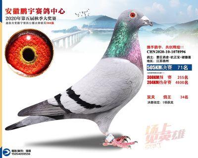 安徽�i宇�Q�71名