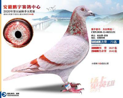 安徽�i宇�Q�73名