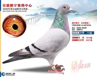 安徽�i宇�Q�74名
