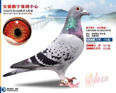 安徽�i宇�Q�76名
