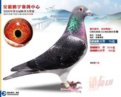 安徽�i宇�Q�78名