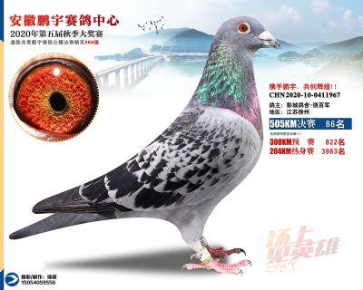 安徽�i宇�Q�86名