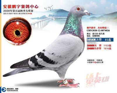 安徽�i宇�Q�85名