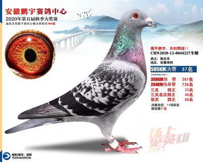 安徽�i宇�Q�87名