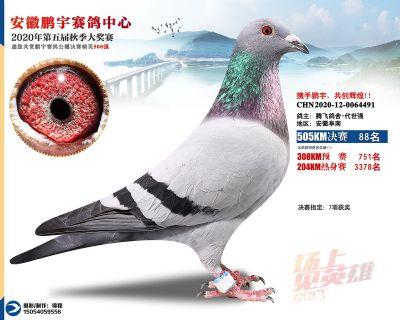 安徽�i宇�Q�88名