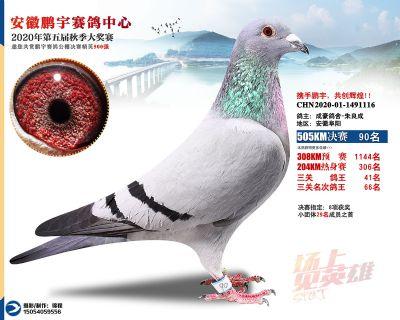 安徽�i宇�Q�90名