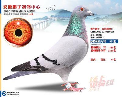 安徽�i宇�Q�95名