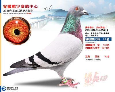 安徽�i宇�Q�97名