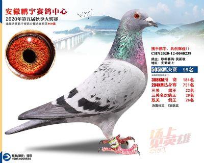 安徽�i宇�Q�99名