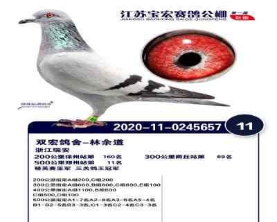 江�K��宏�Q�11名