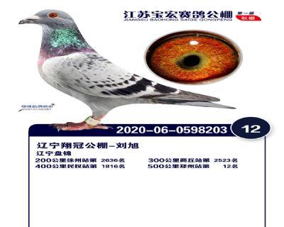 江�K��宏�Q�12名