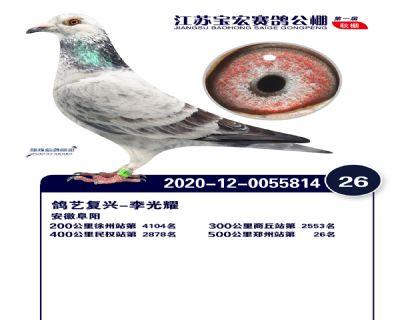 江�K��宏�Q�26名