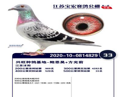 江�K��宏�Q�33名
