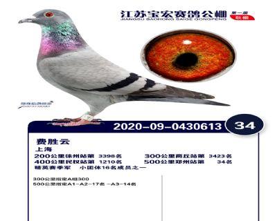 江�K��宏�Q�34名