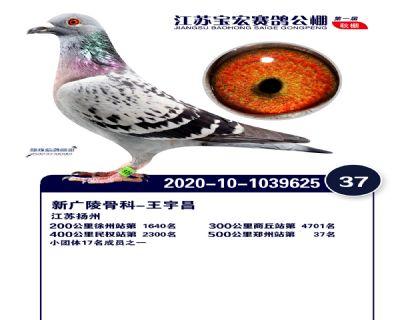 江�K��宏�Q�37名