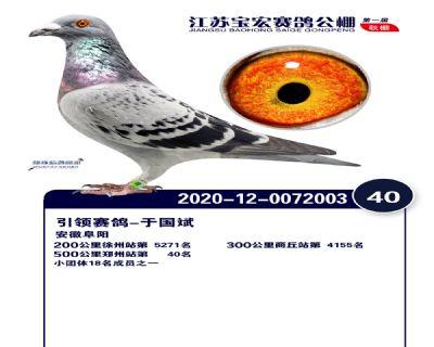 江�K��宏�Q�40名