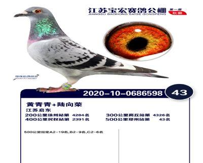 江�K��宏�Q�43名