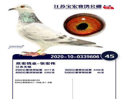 江�K��宏�Q�45名