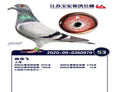 江�K��宏�Q�53名