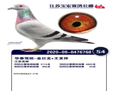 江�K��宏�Q�54名