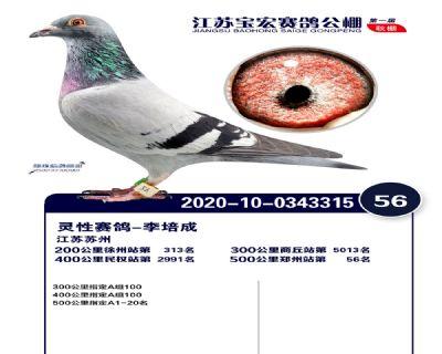 江�K��宏�Q�56名