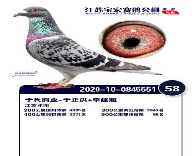 江�K��宏�Q�58名