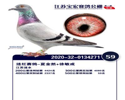 江�K��宏�Q�59名