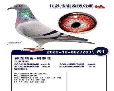 江�K��宏�Q�61名