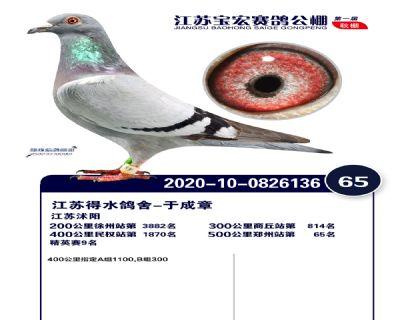 江�K��宏�Q�65名