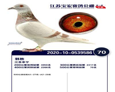 江�K��宏�Q�70名