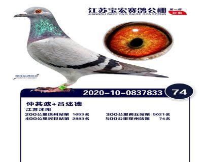 江�K��宏�Q�74名