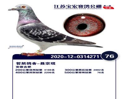 江�K��宏�Q�76名