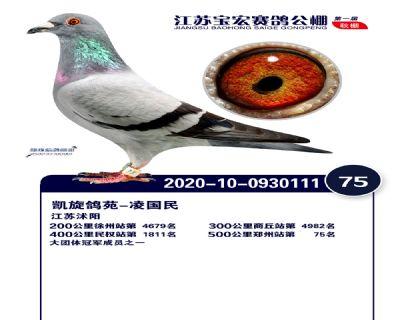 江�K��宏�Q�75名