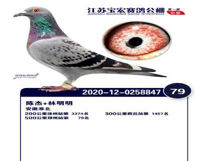 江�K��宏�Q�79名