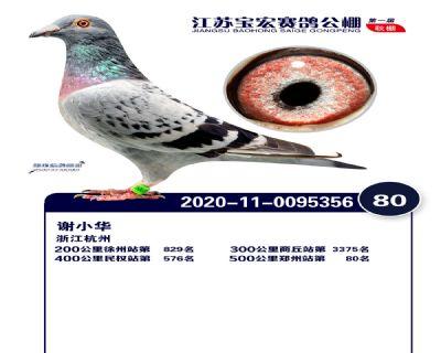 江�K��宏�Q�80名