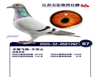 江�K��宏�Q�87名
