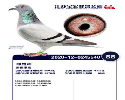 江�K��宏�Q�88名