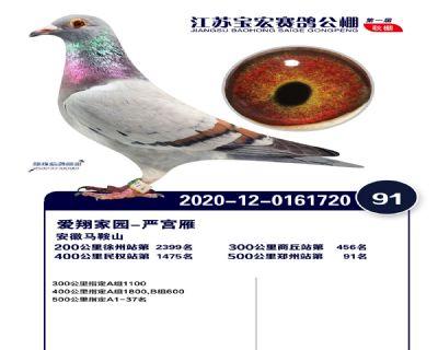 江�K��宏�Q�91名