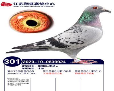 江�K翔盛�Q�301名