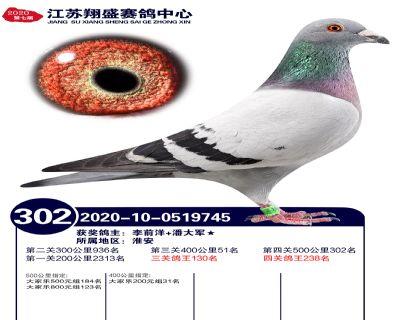 江�K翔盛�Q�302名