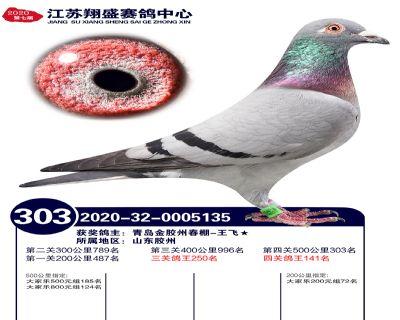 江�K翔盛�Q�303名