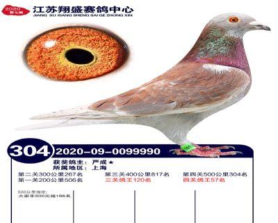 江�K翔盛�Q�304名