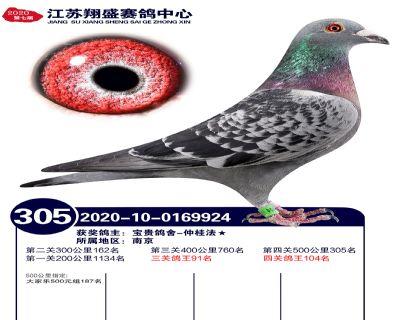 江�K翔盛�Q�305名