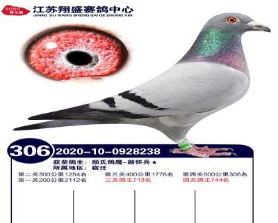 江�K翔盛�Q�306名
