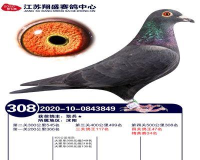 江�K翔盛�Q�308名