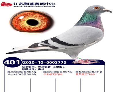 江�K翔盛�Q�401名