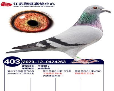 江�K翔盛�Q�403名