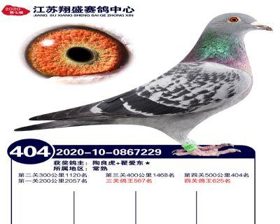 江�K翔盛�Q�404名